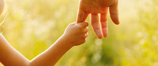 What Are the Different Types of Child Custody in Illinois?